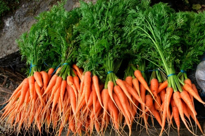 Healthy Foods For Glowing Skin - Carrots