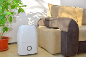 What Are The Benefits Of Using A Dehumidifier