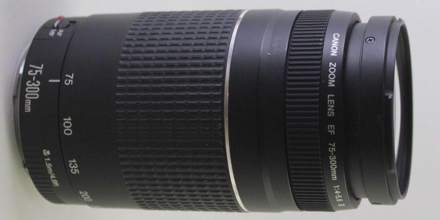 Canon 75 - 300 Lens