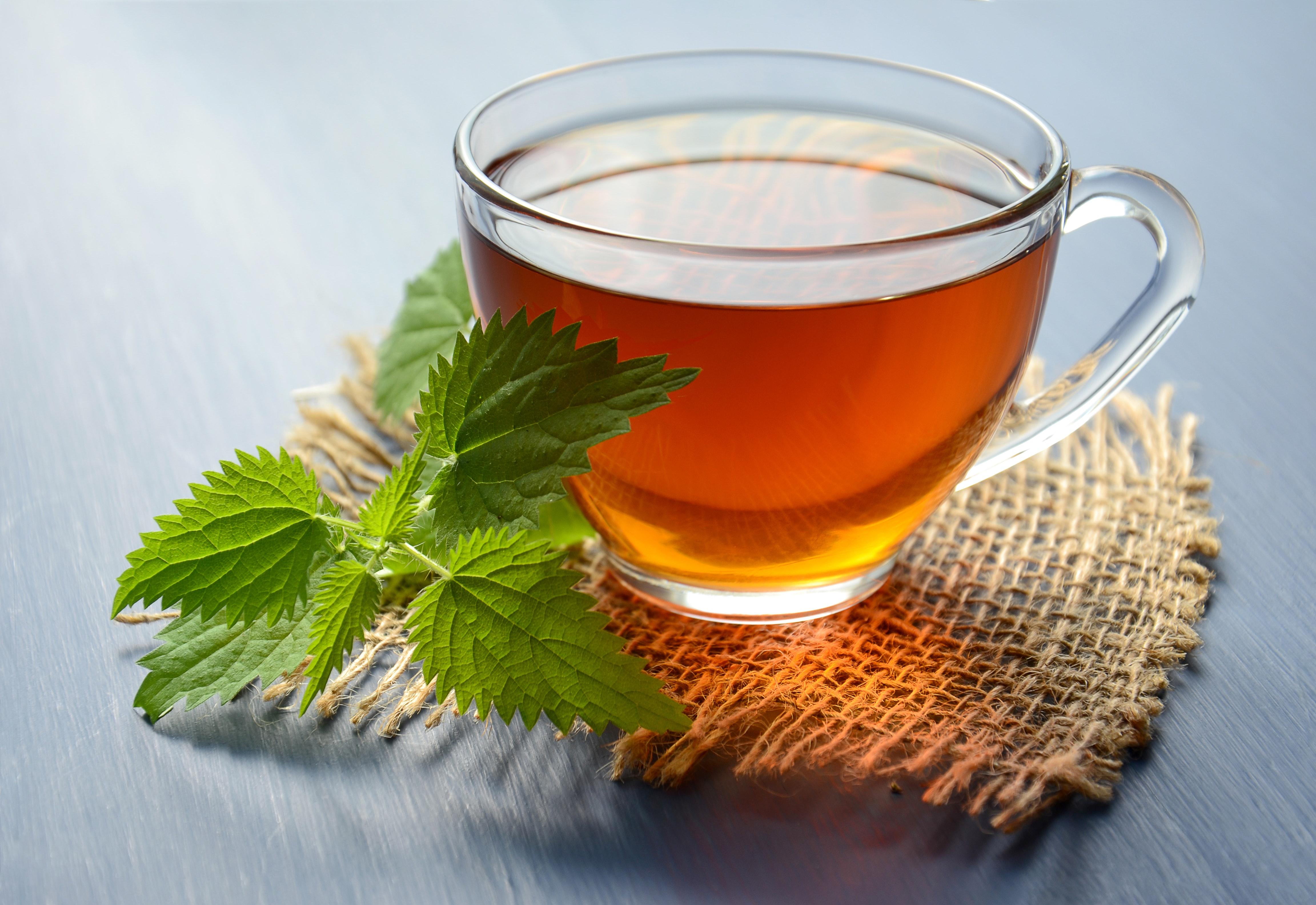 Top 10 Best Green Tea Brands Online In India