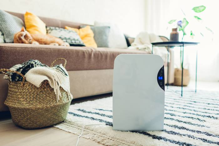 Top 10 Best Dehumidifier For Your Home To Beat Dampness and Mold - Review & Buying Guide