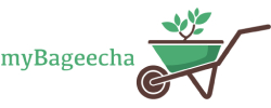 MyBageecha Coupons and deals